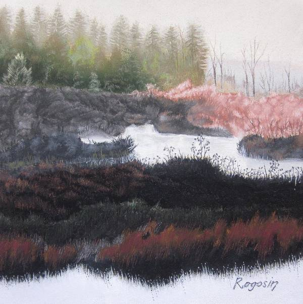 Landscape Art Print featuring the pastel The Marsh Of Changing Color by Harvey Rogosin