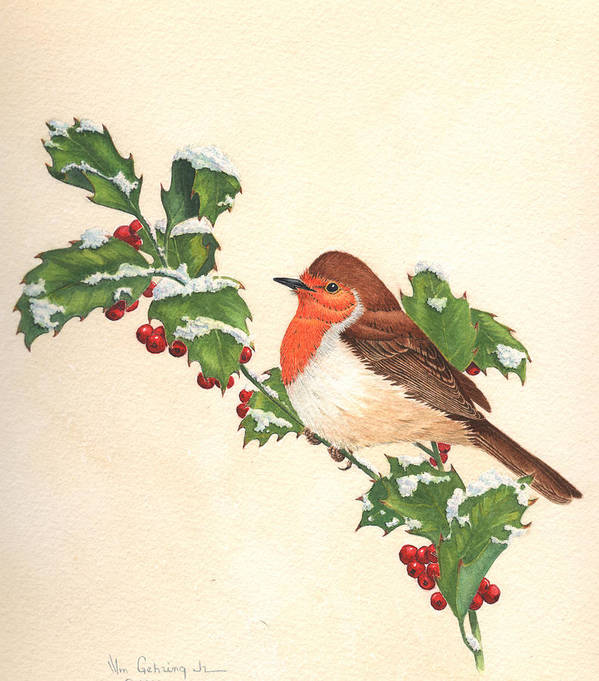 Bird Art Print featuring the painting English Robin by Bill Gehring