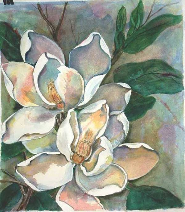 Watercolor Art Print featuring the painting Magnolia four by Diane Ziemski