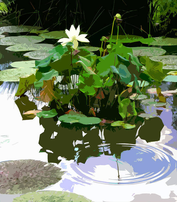 Lotus Art Print featuring the photograph Ripples on the Lotus Pond by John Lautermilch