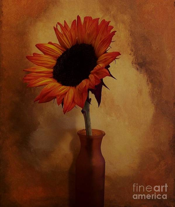 Photo Art Print featuring the photograph Sunflower Seed Maker by Marsha Heiken