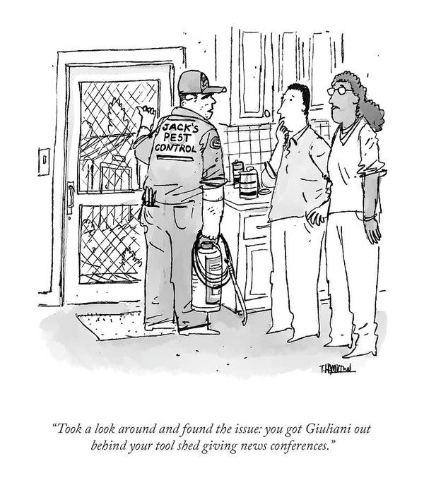 """""""took A Look Around And Found The Issue: You Got Giuliani Out Behind Your Tool Shed Giving News Conferences."""" Art Print featuring the drawing Found The Issue by Tim Hamilton"""