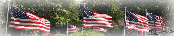 Flags Art Print featuring the photograph Memorial Day by James Barrere