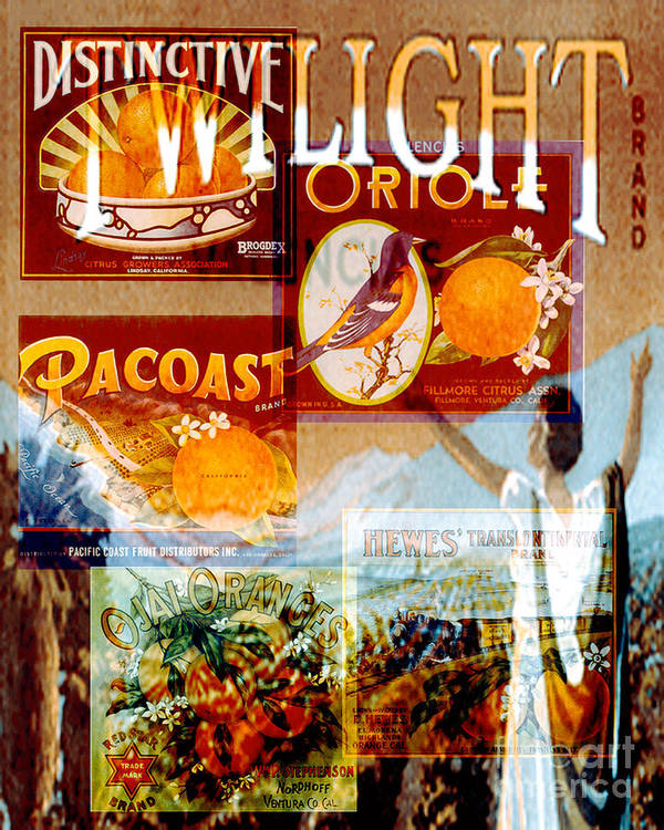 Collages Art Print featuring the digital art Oranges by David Mendoza