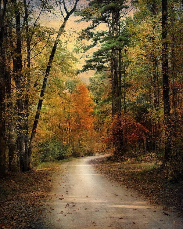 Autumn Art Print featuring the photograph Autumn Forest 4 by Jai Johnson