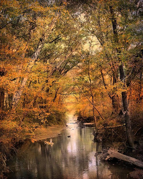Autumn Art Print featuring the photograph Autumn Riches 2 by Jai Johnson