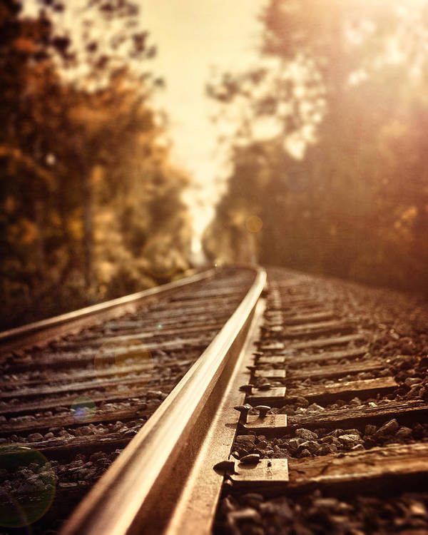 Railroad Art Print featuring the photograph The Journey by Lisa Russo