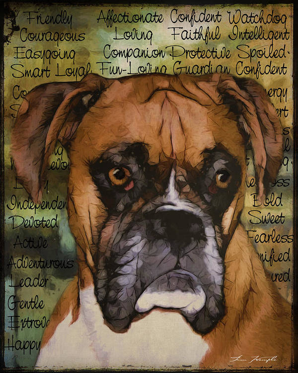 Boxer Art Print featuring the digital art Boxer by Andy's Paw Prints