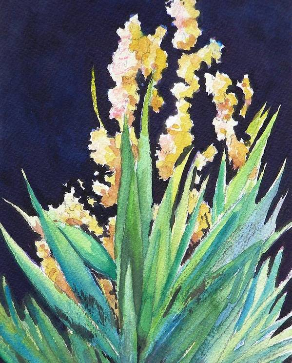 Flower Art Print featuring the painting Night Bloom by Dorothy Nalls
