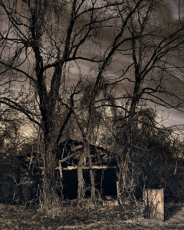 Stark Art Print featuring the photograph Somber Mournings by Steve Parrott