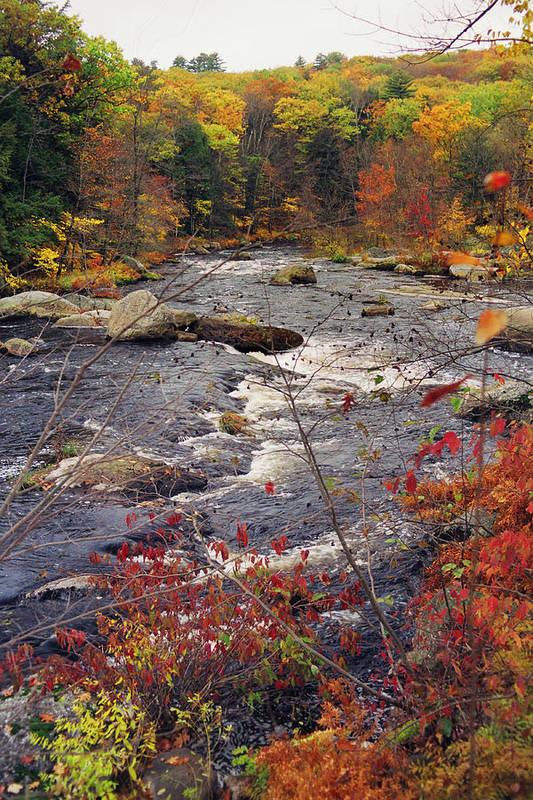 Autumn Art Print featuring the photograph Autumn River by Joann Vitali