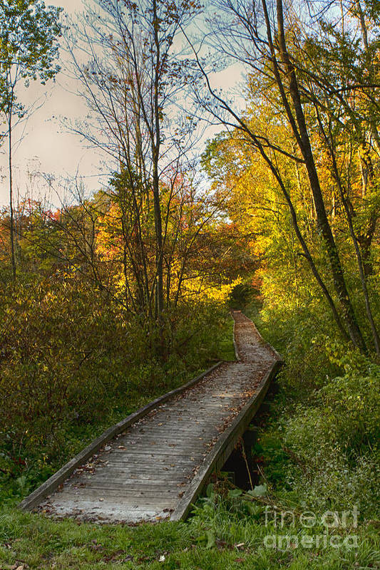 Fall Art Print featuring the photograph Let's Walk by Rich Wise
