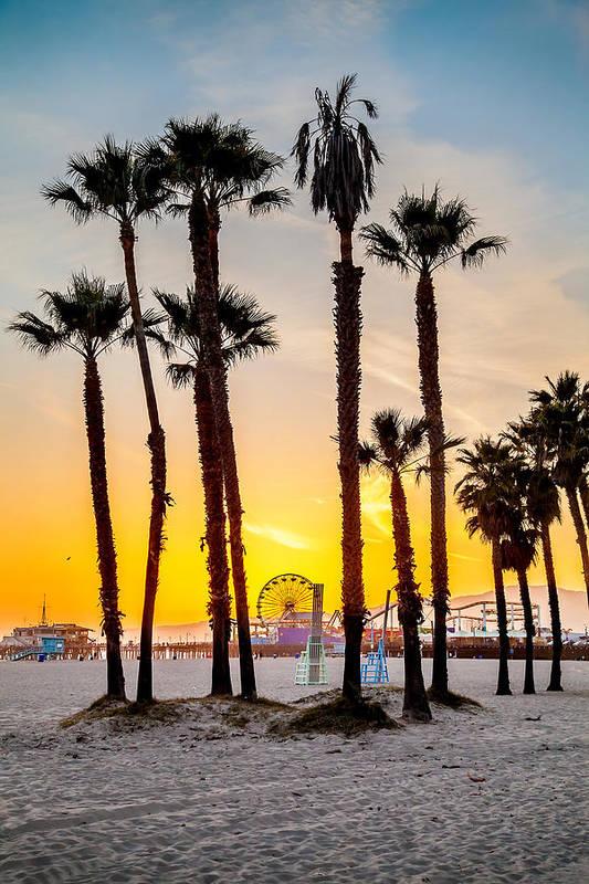 Los Angeles Art Print featuring the photograph Santa Monica Palms by Az Jackson