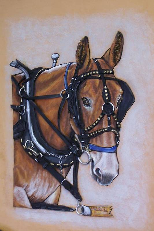 Horses Art Print featuring the painting Augustus by Lilly King