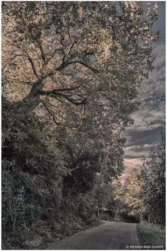 Dawn. Montepulciano Art Print featuring the photograph Dawn Montepulciano by Ricardo Baez-duarte