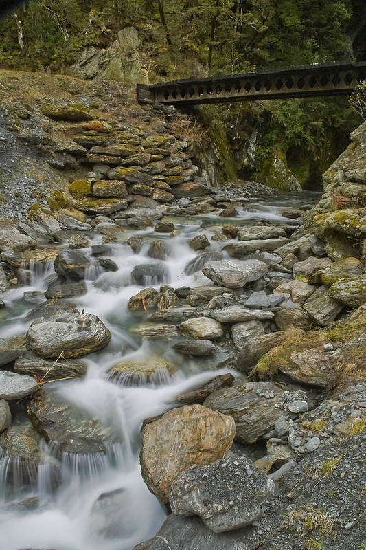 Haast Art Print featuring the photograph Haast Waterfall by Andrea Cadwallader