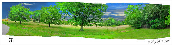 Trees Art Print featuring the photograph Pi by Larry Mulvehill