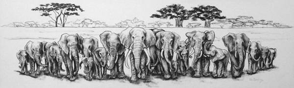 Elephants Art Print featuring the drawing Following The Matriarch by Ann Beeching