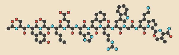 Afamelanotide Art Print featuring the photograph Afamelanotide Drug Molecule by Molekuul