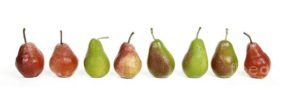 Food And Drink Print featuring the photograph Pears by Bernard Jaubert