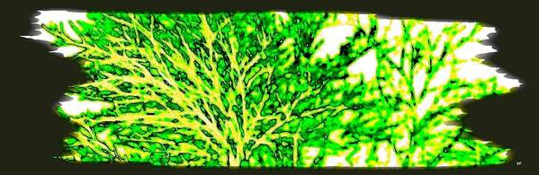 Arbres Verts Print featuring the digital art Arbres Verts by Will Borden