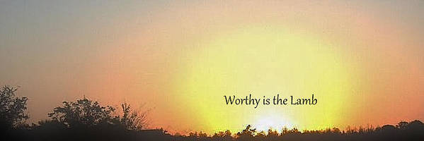 Worthy Is The Lamb Art Print featuring the photograph Worthy Is The Lamb by Amanda Dinan