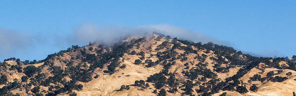 California Art Print featuring the photograph Misty Mountain by Chris Fullmer