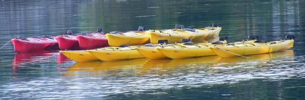Kayak Art Print featuring the photograph Waiting Kayaks by Carol Bruno