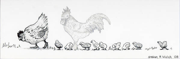 Chickens Art Print featuring the drawing Norman And Kathy And Kids by Steven Welch