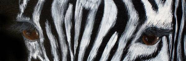 Zebra Eyes Art Print featuring the painting Whos Watching Who  Zebra by Darlene Green