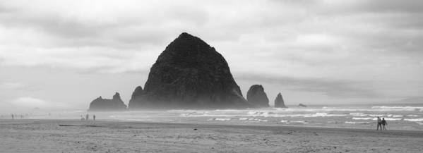 Oregon Art Print featuring the photograph Walk Along by Sabrina Hall