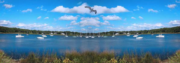 Marina Park Art Print featuring the photograph Marina by Lourry Legarde
