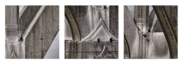 Architecture Art Print featuring the photograph Architectural Detail Triptych by Carol Leigh