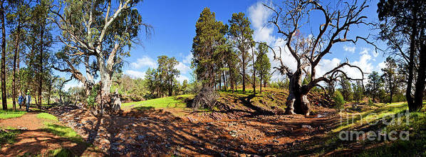 Sacred Canyon Flinders Ranges South Australia Australian Landscape Pano Panorama Outback Spring Art Print featuring the photograph Sacred Canyon, Flinders Ranges by Bill Robinson