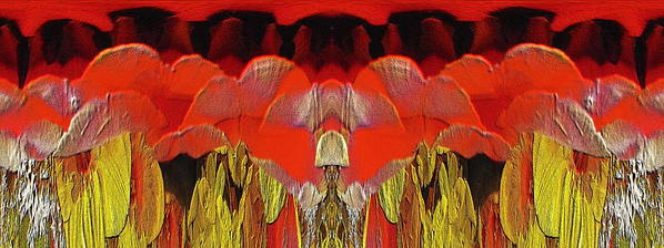 Abstract Print featuring the digital art The Bouquet Unleashed 4 by Tim Allen