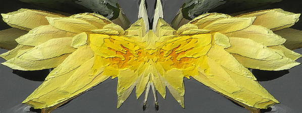 Abstract Art Print featuring the digital art Water Lily Unleashed 4 by Tim Allen