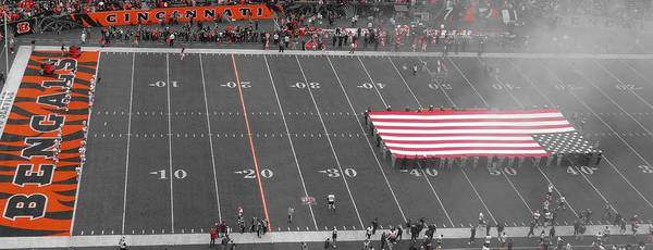 American Flag At Paul Brown Stadium Art Print featuring the photograph American Flag At Paul Brown Stadium by Dan Sproul