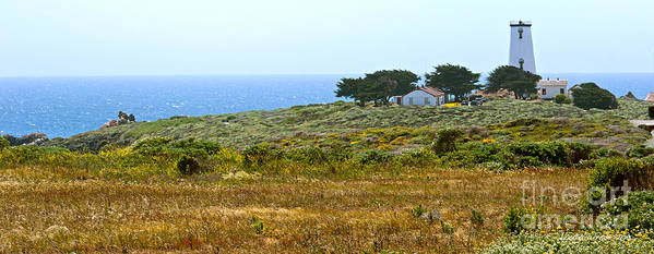 Piedras Blancas Lighthouse Print featuring the photograph Piedras Blancas Lighthouse Near San Simeon And Cambria Along Hwy 1 In California by Artist and Photographer Laura Wrede