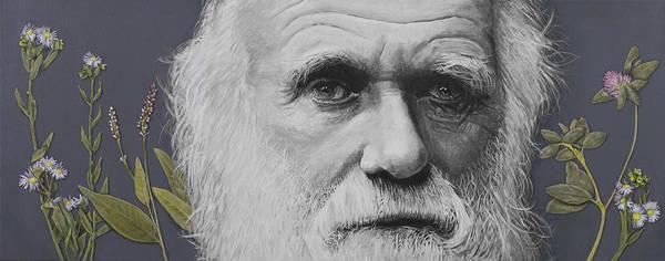 Evolution Print featuring the painting Sandwalk Wood- Charles Darwin. by Simon Kregar