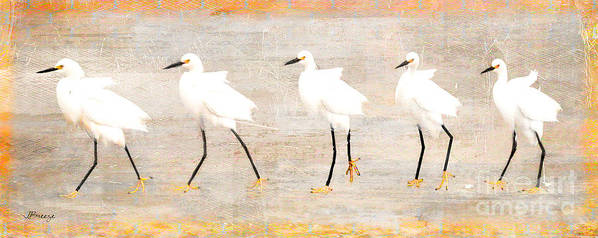 Egrets Art Print featuring the digital art Don't Follow Me... by Jennie Breeze