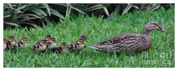 Make Way For The Ducklings Print featuring the photograph Following Mommy by Lee Dos Santos