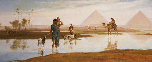 Egyptian; Landscape; Pyramid; Male; Female; Herding; Herd; Goats; Child; Carrying; River; Desert; Orientalist Print featuring the painting Overflow Of The Nile by Frederick Goodall