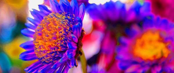bright neon flowers art print by ross germaniuk