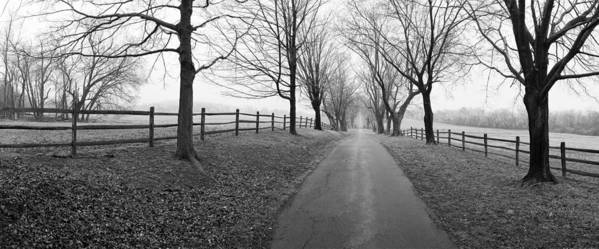 Farm Art Print featuring the photograph Araby Farm Lane by Jan W Faul