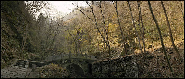 Landscape Trees Trail Bridge Forest Panoramic China Art Print featuring the photograph Ancient Mountain Trail by Ty Lee
