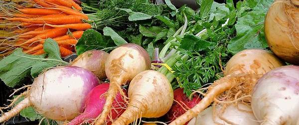 Turnips Art Print featuring the photograph Turnips And Carrots by Pope McElvy