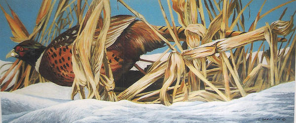 Wildlife Art Print featuring the painting Layin' Low by Steve Greco