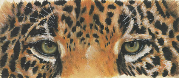 Big Cat Art Print featuring the painting Eye-catching Jaguar by Barbara Keith