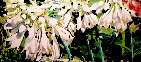 Hosta Flowers Blooms White Art Print featuring the painting Hosta Blooms by Jim Phillips