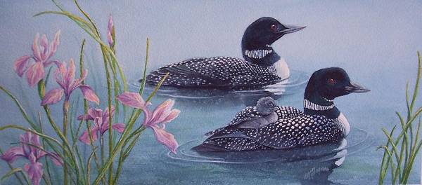 Wildlife Art Print featuring the painting Loon Family by Cherry Woodbury